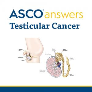 Testicular Cancer Fact Sheet (pack of 50 fact sheets)